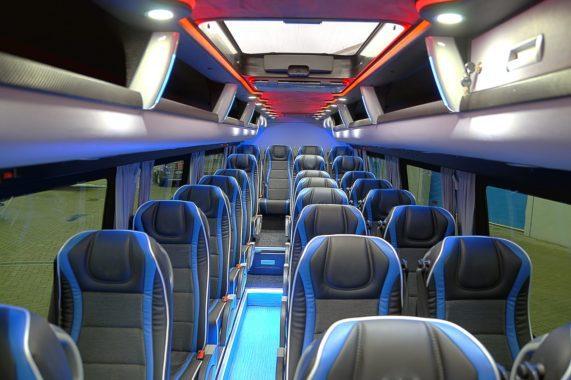 CUBY Bus Tourist Line No. 411
